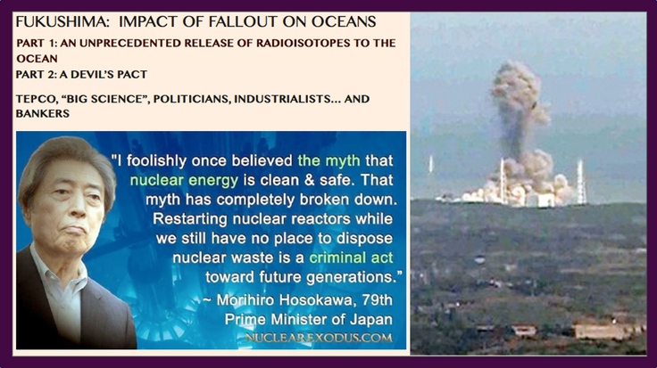 _R1. 00.19.26 Fukushima- Impact of Fallout On Oceans (Pt. 1&2) (854x480)