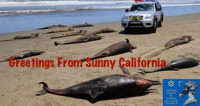 """Greetings From Sunny California"" Radiation Kill- Dolphins, dnhpjl"