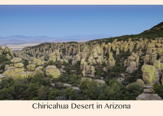Pic 1. Chiricahua Desert in Arizona