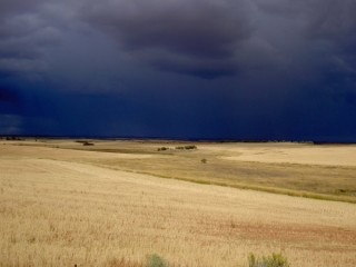 Storm-in-the-Plains-320x240